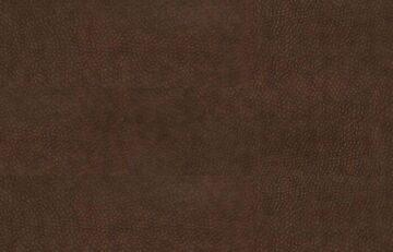 Waran Chocco-6(2)