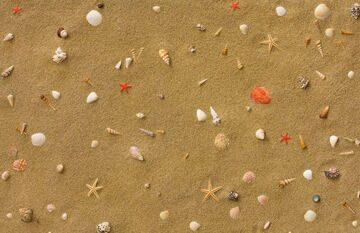 Sandstrand-11(2)