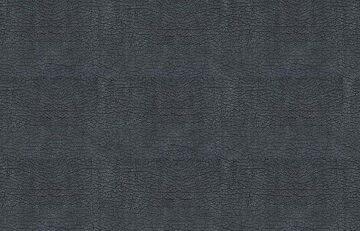 Bison Silver-11(2)