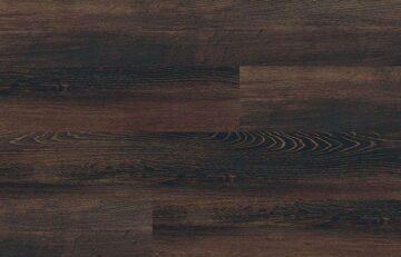 Black Spruce(2)