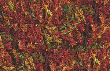Autumn Brake-11(2)