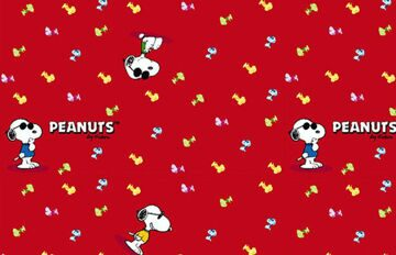 Snoopy Cool-11(2)